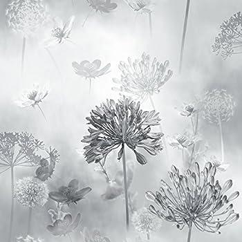 Dandelion wallpaper colour black amazon diy tools flower wallpaper floral spring meadow field magical dandelion greyscale arthouse mightylinksfo