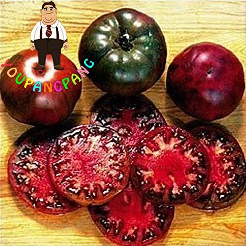 ShopMeeko SEEDS: 100 Stück schwarz Krim Tomate Russina Erbstück Pflanzen fein strukturiertes Fleisch Große Gemüsepflanzen für Hausgarten-DIY Topfpflanze