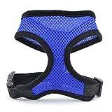 VCB Hundegeschirr-Haustier-Vordere Weste für Hunde Perfekt für das tägliche Training Walking Running - Blau