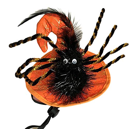 Clluzu Hund Hut Halloween Pet Supplies Dress Up Schmuck Kürbis verwandeln Cap Funny Cool für Cat Puppy
