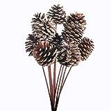 jarown 10pcs piñas secas plantas Hierro tallo Artificial Ramas de otoño invierno Navidad casa jarrón cuenco pantalla para manualidades decor