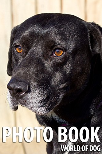 photo-book-world-of-dog-vol7-photo-book-dog-dog-photography-english-edition