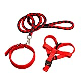 NAttnJf 3 Stücke Hund Zugseil Harness Kragen Leine Outdoor Walking Puppy Pet Supplies Rot schwarz S