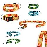 CarlCurt - Fashion Line: Hundehalsband & Hundeleine Im Set, Aus Strapazierfähigem Polyester, S 30-45cm & S 1,90m, Orange