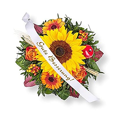 Septembersonne und Schleife: Gute Besserung! von Valentins auf Du und dein Garten