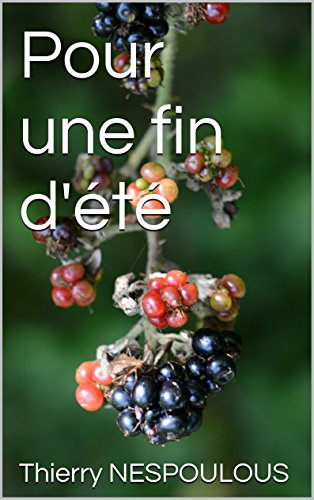 Pour une fin d'été (French Edition)