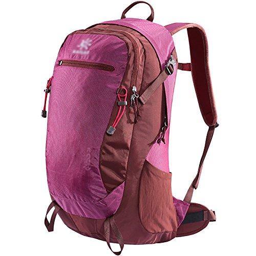 HWLXBB Outdoor Bergsteigen Tasche Männlich und Weiblich 28L Wasserdichte Mehrzweck-Bergsteigen Tasche Wandern Camping Bergsteigen Rucksack 7*