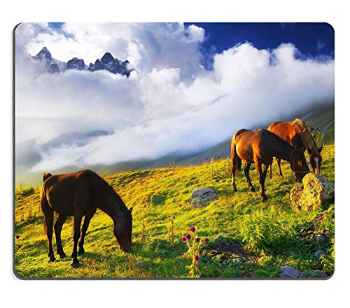 Mousepads cavalli in mountain Valley Beautiful paesaggio naturale con animali Image ID 39289508 by Liili Customized Mousepads Stain Resistance Collector kit Kitchen Table top Desk drink Customized Stain Resistance Collector kit Kitchen Table top Desk