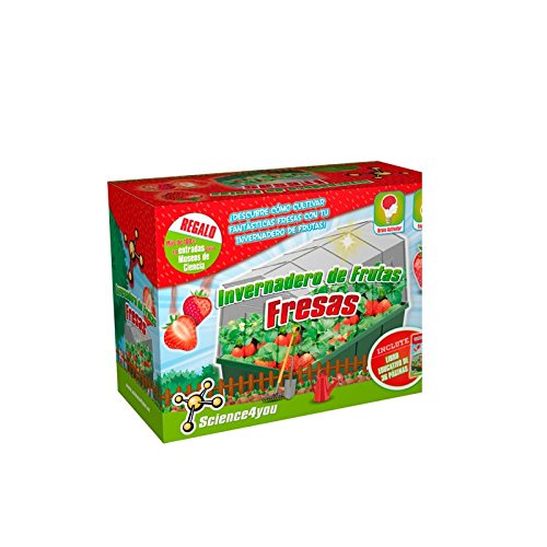 Science4You Serra di frutta: fragole–Gioco educativo e scientifico
