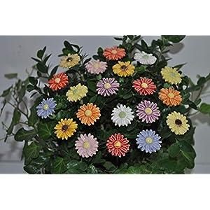 20 Keramikblumen: Gänseblümchen, bunt – 2,50 cm von SylBer-Ceramics