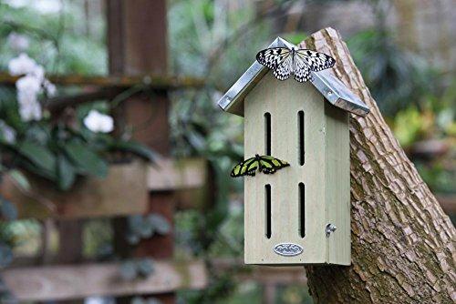 Nisthilfe für Schmetterlinge