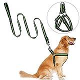 PETBABA Hundegeschirr und Leine Set, No Pull Reflektierend Verstellbar Nylon Hunde Geschirr mit Leine Combo für Hunde Grün L