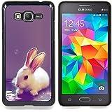 Graphic4You Diseño de Conejito Conejo Lindo Animal Diseño Carcasa Funda Rigida para Samsung Galaxy Grand Prime