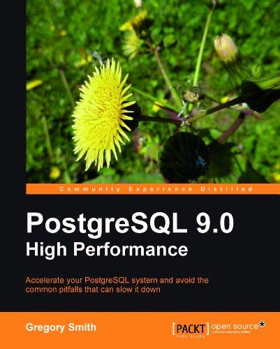 PostgreSQL 9.0 High Performance (English Edition)