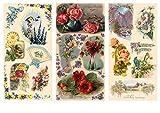 Papier fur Scrapbooking und Decoupage (12 blatt 20x30cm) Blumen Landschaften Garten FLONZ Vintage