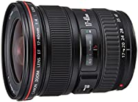 Canon EF 17-40mm F/4L USM - Objetivo para Canon (distancia focal 17-40mm...