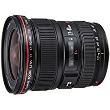 Canon EF 17-40 MM F/4L USM - Objetivo para Canon (distancia focal 17-40mm, apertura f/4) color negro