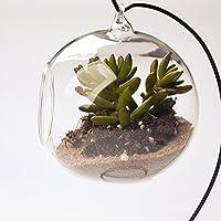 tia-ve forma de bola para colgar bolas decorativas de cristal florero para planta decoración