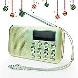 PRUNUS L-218AM-Gold FM AM Radio mit Micro TF Card USB MP3, Gold