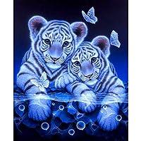 POLPqeD pintura de diamantes kit 5d diamond pintura de diamantes pintura de diamantes para hacer decoración