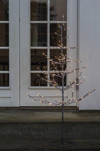 Sirius Leuchtbaum...