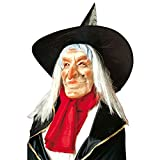 NET TOYS Hexenmaske mit Hut Haar und roter Nase Alte Zauberin Maske Witch Gesichtsmaske mit Perücke und Spitzhut Walpurgis Magierin Latexmaske Runzelige Hexe Karnevalsmaske Halloween Kostüm Zubehör