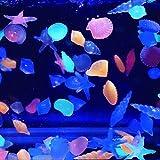 VIDOO Fischbehälter Landschaft Glüh Steine Aquarium Leuchtenden Stein Schmücken Fisch Schildkröten Tank