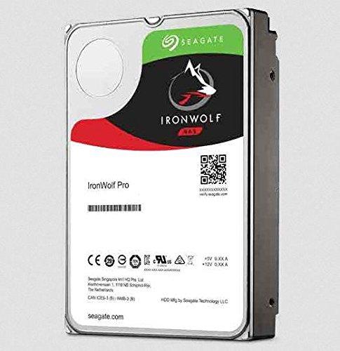 Seagate IronWolf PRO 10TB,ST10000NE0004, 2-Jahre Datenwiederherstellungsservice