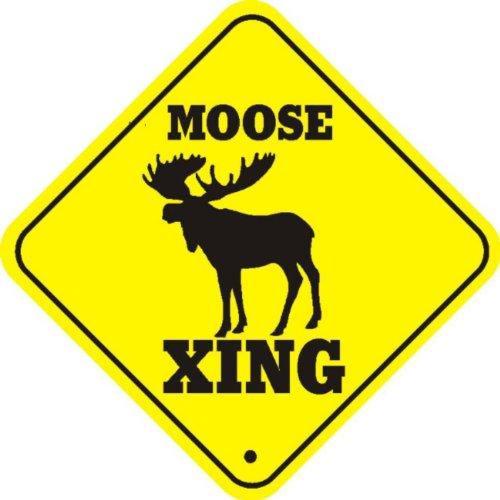 Introducing The Loose Moose - Single