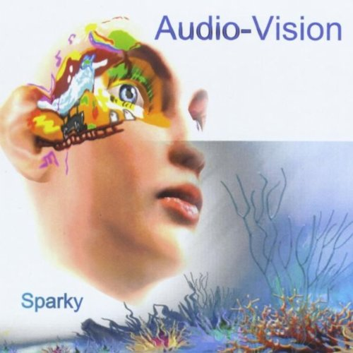audio vision Custom audio video design and installation, integration audio vision integration we are an audio video integration company focused on providing easy to use solutions for all your low voltage needs.