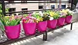 #7: Wonderland (pack of 6) Glossy PP / PVC / High Grade Plastic planter , planters in DARK PINK for garden decor, home decor, balcony planters, garden pots and planters, table top , gift