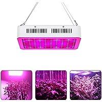 300W LED Lampe de Croissance Full Spectrum,Lampwin Lampe de Plante Intérieur UV IR LED avec 100 lampe LED pour Légumes,Fruit,Fleurs,etc