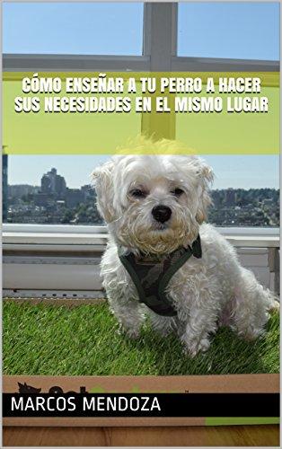 Descargar Libro Cómo Enseñar a Tu Perro a Hacer Sus Necesidades en el Mismo Lugar de Marcos Mendoza