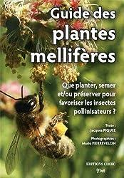 Guide des plantes mellifères : Que planter, semer et/ou préserver pour favoriser les insectes pollinisateurs ?