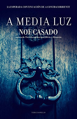 A media luz (Serie Boston nº 3) por Noe Casado