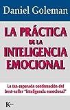La Práctica De La Inteligencia Emocional (Ensayo)