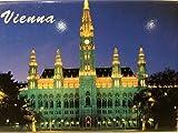 Viena Austria Rathaus Ayuntamiento imán de frigorífico de recuerdo de coleccionista 2.5'x 3.5'