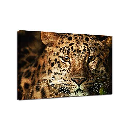 AKLIGSD Cuadros Lienzo Guepardo Animal 70x100 cm Decoración