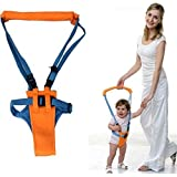Baby Toddler Learn Walking Belt Walker Assistant Safety Harness by Meawmeaw Store