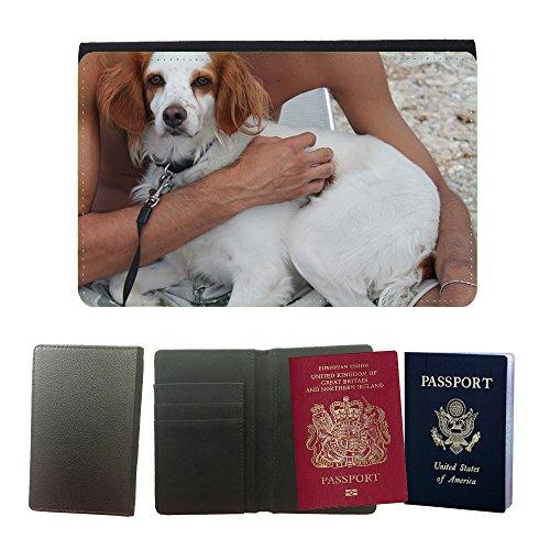 cubierta-del-pasaporte-de-impresion-de-rayas-m00129466-cane-abbraccio-fidelity-amicizia-universal-pa