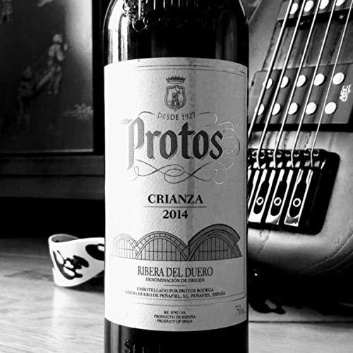 Protos 0.5 - Proto 0.5