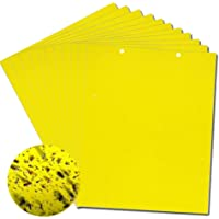 Yellow Sticky Fly Traps,Fly Paper Stickers,Sticky Fly Catchers Dual-Side for Insect against Fungus Gnats, Whiteflies, Aphids, Leafminers,etc- (6x8 Inches, Twist Ties Included) 20-Pack