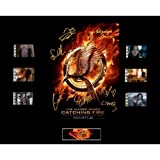 The Hunger Games : Catching Fire Film Cell Presentation : Movie Poster 1