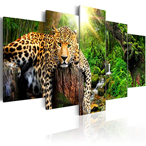 murando - Bilder 200x100 cm - Leinwandbilder - Fertig Aufgespannt - Vlies Leinwand - 5 Teilig - Wandbilder XXL - Kunstdrucke - Wandbild - Tier Leopard Natur g-C-0031-b-n -