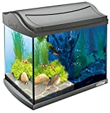 Tetra AquaArt Discovery Line LED Aquarium-Komplett-Set 20 Liter anthrazit (inklusive LED-Beleuchtung, Tag- und...