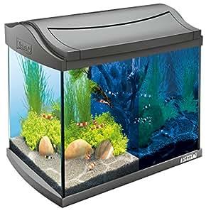 tetra aquaart discovery line led aquarium komplett set 20 liter anthrazit inklusive led. Black Bedroom Furniture Sets. Home Design Ideas