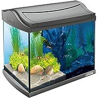 Tetra AquaArt Discovery Line LED Aquarium-Komplett-Set 20 Liter anthrazit (inklusive LED-Beleuchtung, Tag- und Nachtlichtschaltung, Innenfilter und Aquarienpumpe, ideal für Garnelen)