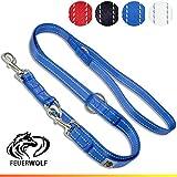 FEUERWOLF Hundeleine 3-Fach verstellbar - Doppelleine - Mittlere und große Hunde - Robust und stabil - Beidseitig reflektierend - 2,2m lang - Blau