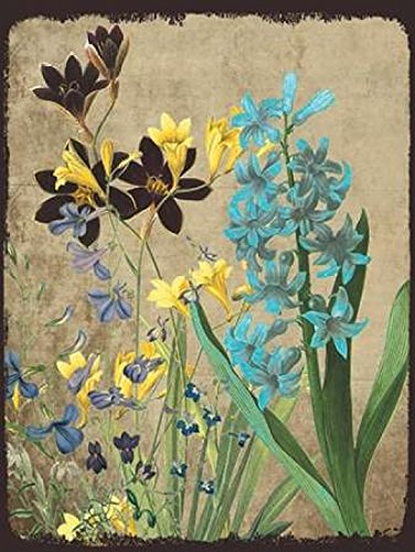 sheldon-lewis-fresh-meadow-bloom-artistica-di-stampa-5588-x-7112-cm