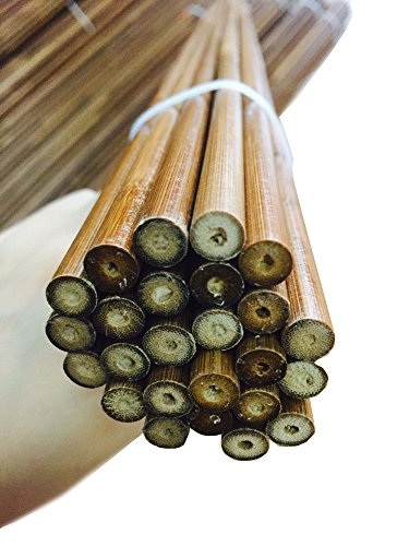 12pcs-same-weight-bamboo-arrow-shafts-33-50-55-27-29g-brown-only-shafts